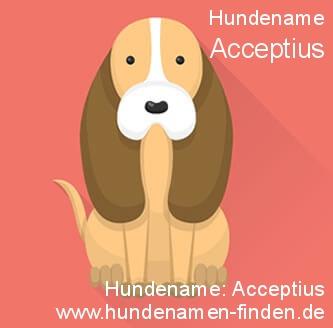 Hundename Acceptius - Hundenamen finden