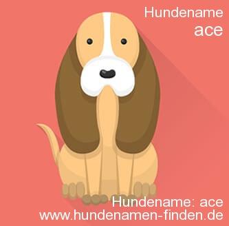 Hundename Ace - Hundenamen finden