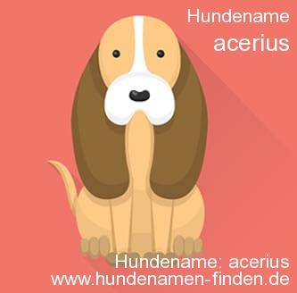 Hundename Acerius - Hundenamen finden