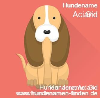 Hundename Aciano - Hundenamen finden