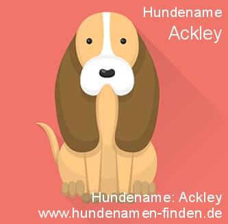 Hundename Ackley - Hundenamen finden