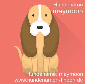 Hundename Maymoon - Hundenamen finden
