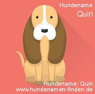 Hundename Quiri - Hundenamen finden