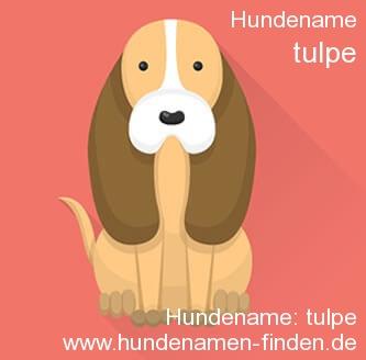 Hundename Tulpe - Hundenamen finden